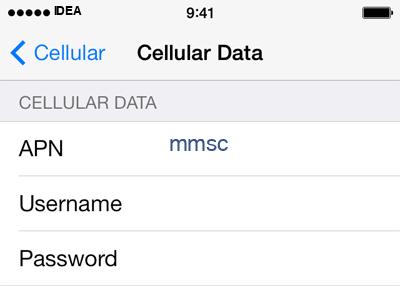 Idea 3 APN settings for iOS screenshot