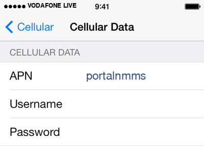 Vodafone 1 APN settings for iOS screenshot
