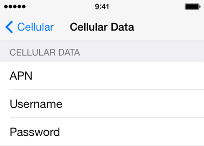 Etisalat 1 APN settings for iOS screenshot