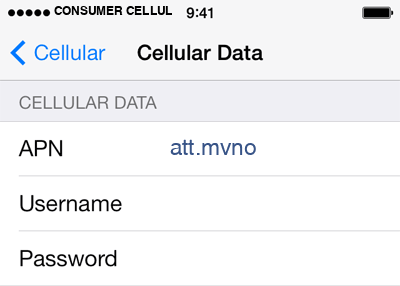 Consumer Cellular  1 APN settings for iOS screenshot