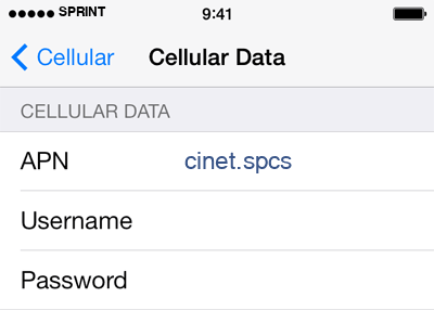 Sprint 1 APN settings for iOS screenshot