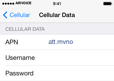 AirVoice 2 APN settings for iOS screenshot