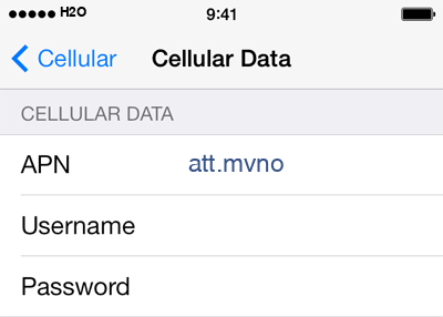 H2O 3 APN settings for iOS screenshot