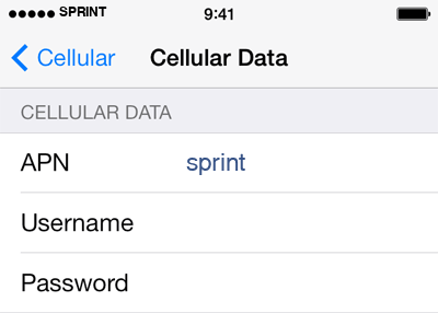 Sprint 2 APN settings for iOS screenshot