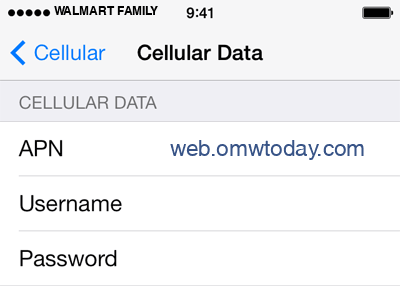 Walmart Family Mobile 2 APN settings for iOS screenshot