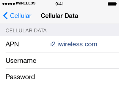iWireless 1 APN settings for iOS screenshot