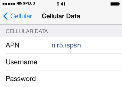 RingPlus 2 APN settings for iOS screenshot