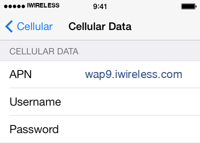 iWireless 3 APN settings for iOS screenshot