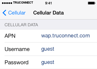 TruConnect 1 APN settings for iOS screenshot