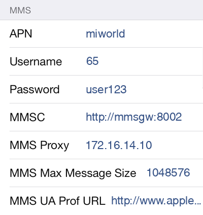 M1 3 MMS APN settings for iOS screenshot