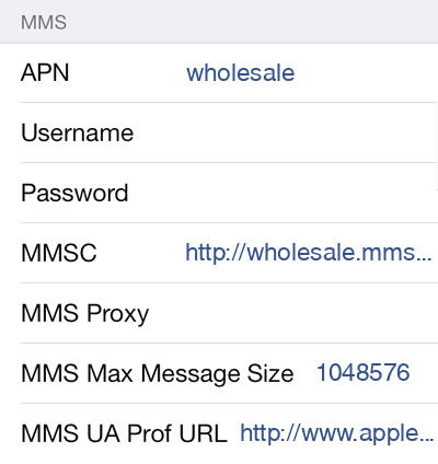 ROK Mobile 2 MMS APN settings for iOS screenshot
